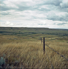 Frenchman Valley Fenceline (JimShootsFilm) Tags: canada 120 film analog rural fence mediumformat river square wire kodak hasselblad squareformat barbedwire fencing coulee analogue prairie saskatchewan plains prairies grasslands barbedwirefence rivervalley fencepost woodfence frenchman ektar hasselblad500cm kodakektar frenchmanrivervalley frenchmanriver shaunavon hasselblad500 southernsaskatchewan ruralcanada