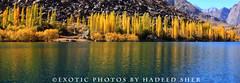 Autumn nuance !! (C@MARADERIE) Tags: autumn pakistan lake color nature landscape colorful natural naturism northernareas skardu autumnalscene kachura beautifulpakistan upperkachura kachuralake skarduvalley lakesofpakistan beautyofpakistan gilgitbaltistan naturismphotography