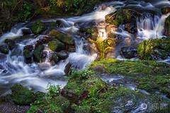 Ravennaschlucht (MSPhotography-Art) Tags: autumn fall creek deutschland waterfall rocks wasserfall herbst steine fluss schwarzwald blackforest wandern moos badenwrttemberg breitnau ravennaschlucht