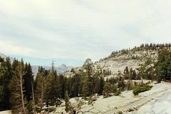 (Stephanie DiCarlo) Tags: california trees sky sunlight mountain mountains nature nationalpark hike yosemite yosemitenationalpark
