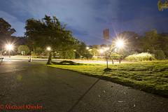 IMG_9146.jpg (Dj Entreat) Tags: california goldengatepark longexposure nightphotography tree canon bayarea sanfranciscocalifornia redring canon6d 1635ii