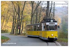 Kirnitzschtalbahn (3) (olherfoto) Tags: tram gotha bahn tramcar sächsischeschweiz elbsandsteingebirge badschandau kirnitzschtal kirnitzschtalbahn strasenbahn