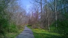 aidan's magical road (exiae) Tags: woods walk hahahaha takomapark unedited unfiltered imissyoussoooommuchomghowisyourbrotherandmomandadandugyishus