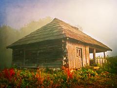(Alin B.) Tags: morning autumn mist mountain cold fall nature fog rust rustic rusty toamna alinbrotea
