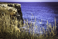 IMG_5078 (Moretti Matteo) Tags: road sea summer italy sun fall texture mystery strada italia mare august unknown sole terra puglia gemelle orso stradina 2014 battuta sorelle
