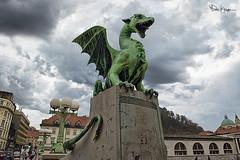 """My armor is like tenfold shields, my teeth are swords, my claws spears, the shock of my tail a thunderbolt, my wings a hurricane, and my breath death!"" ~Smaug, The Hobbit (Karnevil) Tags: nikon europe dragon nationalgallery capitol slovenia ljubljana stnicholascathedral townsquare jrrtolkien thehobbit smaug 1901 archbridge d610 dragonbridge ljubljanacastle triplebridge ljubljanicariver ljubljanadragon ljubljanacathedral fotoartistry thedesolationofsmaug ljubljanatownhall thehobbitthedesolationofsmaug thejubileebridge petekrepsphotography thejubileebridgeoftheemperorfranzjosef kopitarstreet resselstreet triplehingedarchbridge"