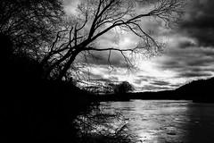 Our Darkness (mripp) Tags: white black river germany landscape bayern deutschland bavaria mono fear monochrom fluss landschaft weiss schwarz angst mystic regen baddream dunkelheit alptraum ourdarkness