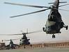Polisy Helikopters in Afghanistan, Ghazni Province (janusz.walczak) Tags: 50 afganistan taskforce pkw ghazni psz mi24 mi17 lubliniec komandosi smiglowiec saperzy wysadzanie jednostkawojskowa magazynbroni operatorzy polskiesilyzadaniowe polskikontyngentwojskowy materialywybuchowe komandosow smiglowce samodzielnagrupapowietrznoszturmowa