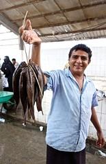 Fish Market, Hodeidah (EleanorGiul ~ http://thevelvetrocket.com/) Tags: yemen イエメン hodeidah iémen йемен justinames 也门 arabpeninsula yemenifood locallifeinyemen fishmarketinhodeidah goatsofyemen httpthevelvetrocketcom เยเมน