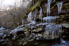 Ice (Eric Hunt.) Tags: cliff ice canyon icicle lichen cedarcreek petitjean cryptogram petitjeanstatepark arkansasstatepark