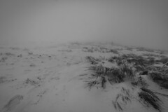 (Nicco__) Tags: mountain snow storm cold wind nieve snowstorm neve nebbia montagna sigurros freddo niebla frio untitled vento appennino tempesta ghiaccio pratomagno windstorm revenants crocedelpratomagno niccolòlandi niccololandi