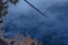 flight (fdfotografie) Tags: orange outdoor flight himmel wolken struktur blau dslr flugzeug landschaft bltter baum muster bunt zweige kondensstreifen flug bearbeitung expressiv farbfoto naturundtechnik querformat falschfarben dsenflugzeug expressivebearbeitung spannungsfeldnaturtechnischezivilisation