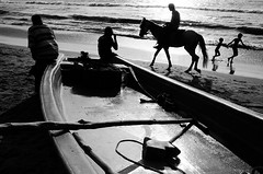 @ Marina Beach, Chennai, 2016 (bmahesh) Tags: life street people horse india beach kids marinabeach chennai ricohgr tamilnadu wwwmaheshbcom