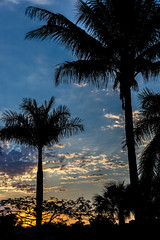 St. Lucie sunset (FotoFloridian) Tags: blue sunset orange sun nature silhouette spring florida sony a6000