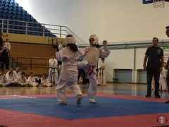 stefanou_15_5_2016_knockdown_244