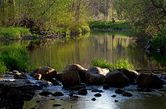 Evening at Evergreen Park (sarasonntag) Tags: park water wisconsin creek river landscape spring stream outdoor pigeon peaceful evergreen serene sheboygan 2016