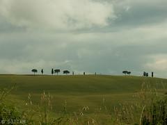CRW_7527-1 (03TTAM) Tags: landscape toscana paesaggi viafrancigena
