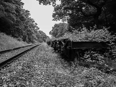 20160701-_7010015 (Richard Brown 56) Tags: railway spa derelict omd em5