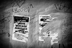 Dcidment l'avenir tait horrible. (www.danbouteiller.com) Tags: france french rouen normandie normandy city ville urban photo de rue photoderue flyer affiche taf tag tags tague tagues manifestation contestation elkhomri el khomri loi travail mur wall noir blanc black white bw nb noiretblanc blackandwhite blackwhite canon canon5d eos 5dmk2 5d 50mm 50mm14 5d2 5dm2 grve mobilisation blocage