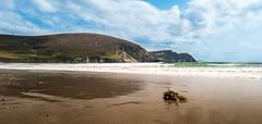 Keel Beach (mickreynolds) Tags: 2016 achill keel nx500 wild atlantic way
