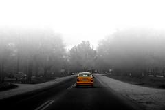 Comprobaciones en el camino (Luciana Garca) Tags: nikon d7200 car auto taxi byn bw black blanco y negro blancoynegro calle ruta road street niebla arboles photography argentina crdoba