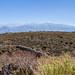 Plateau dAptera - Crète