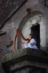 Harpe à Provins (pgauti) Tags: harpe provins ccprovinois communautédecommunesduprovinois lueurdutemps spectacle pentax k5 k5ii da55300 55300mm pgauti aficionados justpentax 5photosaday