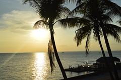 a5 (reginatnia) Tags: natureza photography manaus hoteltropical ribeirinhos rionegro riosolimoes portos pordosol aventura amazonas paisagens teatros