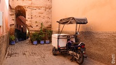196. Transporte / Transport (seni1977) Tags: traveling seni1977 365x39 fujifilm x30 morocco marruecos marrakech