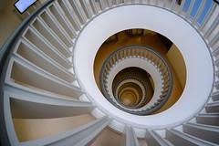 Obliqueness (The Green Album) Tags: berlin stairs floors handrail circles descending city interior modern contemporary architecture fisheye fuji xt1 brandenburgacademyofsciencesandhumanities