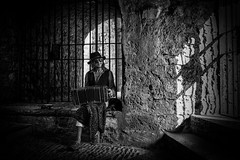 the accordion player (sonofphotography) Tags: sonofphotography worldthroughmyeyes street art portrait landscape available light outdoor fashion bw blackwhite blackandwhite leicam240 summilux25mm14 player accordion ibiza castle oldtown shadow