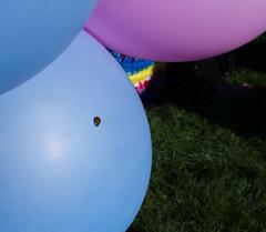 Going my way? (Michael Dunn~!) Tags: balloon dolorespark ladybug missiondistrict park photowalking photowalking20100822 sanfrancisco