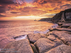 St Marys Golden Sunrise (N.J.W Images) Tags: seascape sunrise northumberland goldenhour whitleybay 1740l stmaryslighthouse oldhartley canon6d