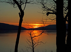 Bellingham Bay (judy_and_ed) Tags: orangesky reflectedsky whatcomcounty silhouettedtrees rossparknet