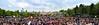 Disneyland Paris (antonio_sabadell) Tags: pink flowers fab flower green topf25 floral colors fauna wow deutschland flora flickr power shots african quality best fantasia daisy 200views garten kiel finest natures fridays outstanding pinkn botanischer top20flowers fotografen mywinner abigfave pinkalicious top20pink jeannysfoto coloursplosion mimamorflowers
