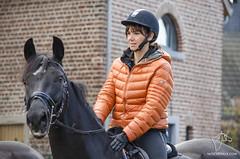 2014.11.11 - Saint-Hubert CEH (NosChevaux.com) Tags: horses horse cheval pony chevaux paard paarden ceh poney sainthubert jeneffe haneffe noschevauxcom centrequestredehesbaye