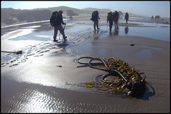 Oregon Coast Backpack (abking09) Tags: ocean people mist color oregon coast sand break pacific backpack bandon allanking