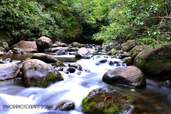 Ghost People (Jawor_Photography) Tags: longexposure plants green nature water creek forest river landscape outdoors hawaii movement rainforest rocks smooth maui rapids iao pools jungle waterfalls valley brook jurassicpark iaovalley slowexposure jaworphotography