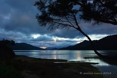 Kenepuru Head, Marlborough Sounds., NZ (flyingkiwigirl) Tags: head sound campground doc marlborough sounds kenepuru