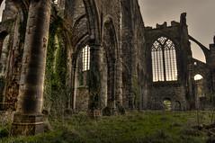 Abbaye d'Aulne (soundbo) Tags: belgium belgique hdr abbaye hainaut aulne