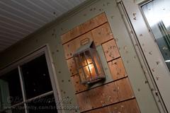 Winter Moths Return! (brucetopher) Tags: capecod massachusetts 7d wintermoth canon7d wintermoths brucetopher