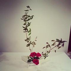 Mrunmayi's ikebana