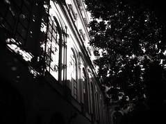 Light me (Ph.ClaudioLuciano) Tags: life windows light white black tree me alberi point day ray hole emotion pic flare napoli naples academy luce accademia