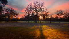 Sunset (crowt59) Tags: park las sunset kyle lumix friend texas wide liam irving ultra colinas logsdon zs3