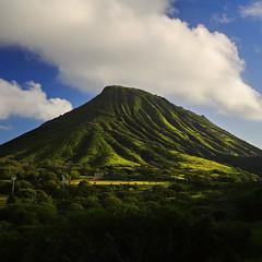 Koko Head (JN) Tags: blue light green texture hawaii nikon oahu tropical lush 1735mmf28d hawaiikai d700