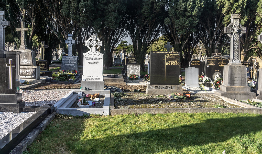 A MORE MODERN SECTION OF GLASNEVIN CEMETERY WHERE SOME ARE BURIED IN STYLE REF-101217