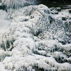 in case you don't like frozen bananas ... ;) (lunaryuna) Tags: winter nature season waterfall iceland spray lunaryuna icicles freezingover theenchantmentofseasons icefigures ausgerechnetbananen naturaliceart