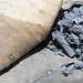 Wadi Haifa - charcoal study