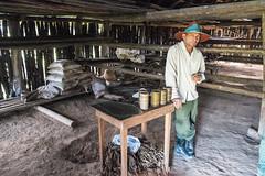 Guajiro (#senzamanisulmanubrio) Tags: cuba tobacco tabaco campesino guajiro viales