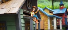 Woody Life () Tags: f14 woody olympus dg 25mm   em5mk2 em5mkii